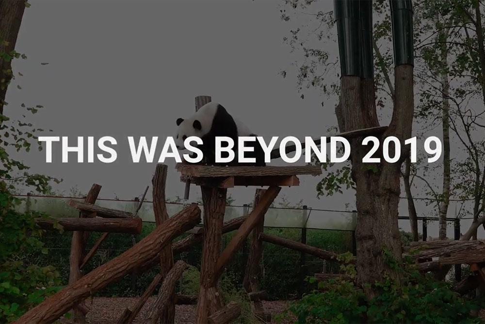 2019 BEyond programme achievements